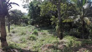 Terreno En Ventaen Panama, Las Cumbres, Panama, PA RAH: 20-1589