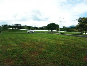 Terreno En Ventaen Chame, Punta Chame, Panama, PA RAH: 20-1889