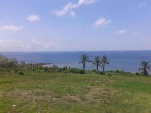 Terreno En Ventaen Baru, Limones, Panama, PA RAH: 20-2455