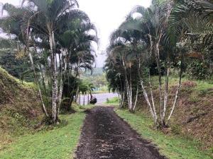 Terreno En Ventaen Colón, Colon, Panama, PA RAH: 20-2469