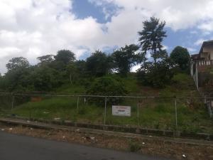 Terreno En Ventaen Panama, Pueblo Nuevo, Panama, PA RAH: 20-3023