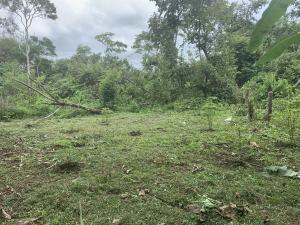 Terreno En Ventaen Chilibre, Maria Eugenia, Panama, PA RAH: 20-3094