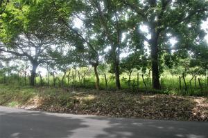 Terreno En Ventaen Chame, Sora, Panama, PA RAH: 20-3486