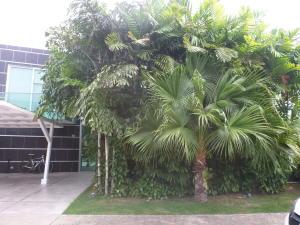 Casa En Alquileren Panama, Costa Sur, Panama, PA RAH: 20-3765