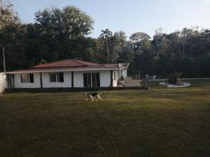 Terreno En Ventaen Cocle, Cocle, Panama, PA RAH: 20-3901