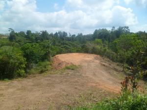 Terreno En Ventaen Penonome, Toabre, Panama, PA RAH: 20-4158