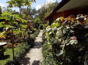 Negocio En Ventaen Cocle, Cocle, Panama, PA RAH: 20-4400
