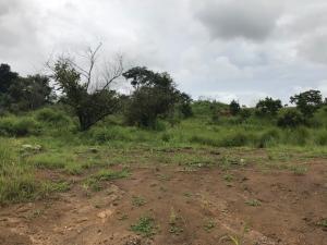 Terreno En Ventaen David, David, Panama, PA RAH: 20-4420