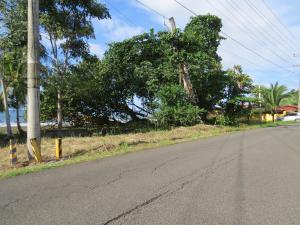 Terreno En Ventaen Colón, Maria Chiquita, Panama, PA RAH: 20-4884
