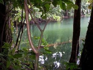 Terreno En Ventaen Colón, Colon, Panama, PA RAH: 20-4898
