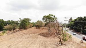 Terreno En Alquileren Panama, Tocumen, Panama, PA RAH: 20-4949
