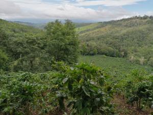 Terreno En Ventaen Renacimiento, Santa Clara, Panama, PA RAH: 20-5388