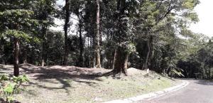 Terreno En Ventaen Chame, Sora, Panama, PA RAH: 20-5419