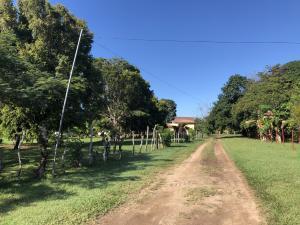 Terreno En Ventaen Cocle, Cocle, Panama, PA RAH: 20-5535