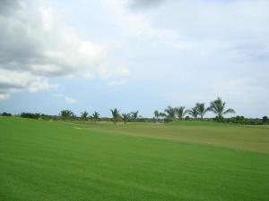 Terreno En Ventaen Panama, Santa Maria, Panama, PA RAH: 20-5575