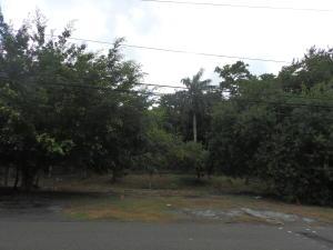 Terreno En Ventaen Panama, Curundu, Panama, PA RAH: 20-6068
