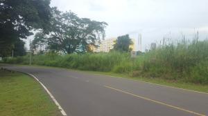 Terreno En Ventaen Panama, Curundu, Panama, PA RAH: 20-6317