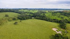 Terreno En Ventaen La Chorrera, Chorrera, Panama, PA RAH: 20-6595