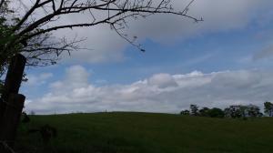 Terreno En Ventaen La Chorrera, Chorrera, Panama, PA RAH: 20-6709