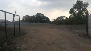 Terreno En Alquileren Panama, Tocumen, Panama, PA RAH: 20-6945