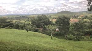 Terreno En Ventaen La Chorrera, Chorrera, Panama, PA RAH: 20-7232