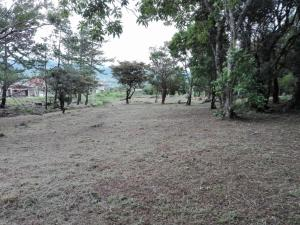 Terreno En Ventaen Boquete, Alto Boquete, Panama, PA RAH: 20-7587