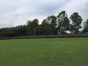 Terreno En Ventaen Panama, Costa Del Este, Panama, PA RAH: 20-7914
