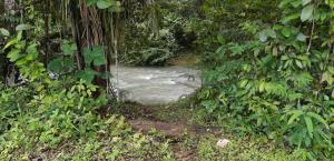 Terreno En Ventaen Panama Oeste, Capira, Panama, PA RAH: 20-8068