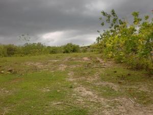 Terreno En Ventaen Cocle, Cocle, Panama, PA RAH: 20-8125