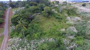 Terreno En Ventaen Panama, Las Mananitas, Panama, PA RAH: 20-8469