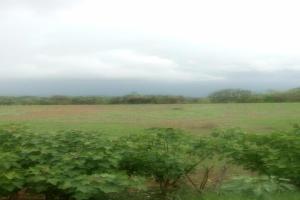 Terreno En Ventaen Colón, Maria Chiquita, Panama, PA RAH: 20-8551