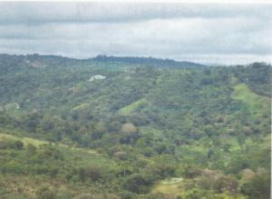 Terreno En Ventaen Chiriqui, Chiriqui, Panama, PA RAH: 20-8662