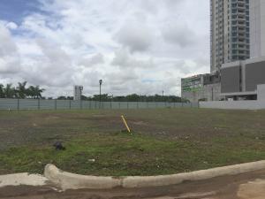 Terreno En Ventaen Panama, Santa Maria, Panama, PA RAH: 20-8858