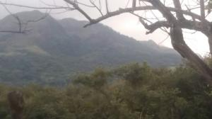 Terreno En Ventaen Chame, Gorgona, Panama, PA RAH: 20-8998