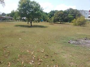 Terreno En Ventaen Arraijan, Vista Alegre, Panama, PA RAH: 20-9047