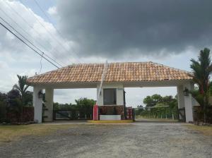 Terreno En Ventaen Chame, Punta Chame, Panama, PA RAH: 20-9162
