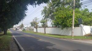 Terreno En Alquileren Panama, Parque Lefevre, Panama, PA RAH: 20-9186