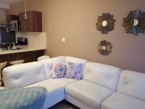 Apartamento En Alquileren Panama, Punta Pacifica, Panama, PA RAH: 20-9396