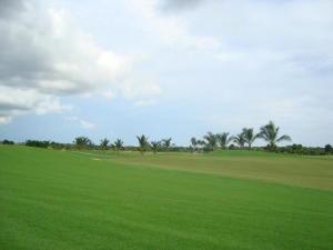 Terreno En Ventaen Panama, Santa Maria, Panama, PA RAH: 20-9434