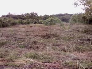 Terreno En Ventaen Pacora, Cerro Azul, Panama, PA RAH: 20-10300