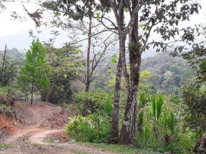 Terreno En Ventaen Cocle, Cocle, Panama, PA RAH: 20-10933
