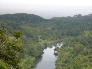 Terreno En Ventaen Colón, Maria Chiquita, Panama, PA RAH: 20-11012