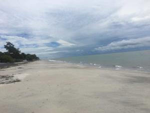 Terreno En Ventaen Cocle, Cocle, Panama, PA RAH: 20-11053