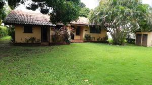 Casa En Alquileren Chame, Coronado, Panama, PA RAH: 20-3295
