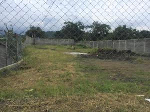 Terreno En Alquileren Chilibre, Chilibre Centro, Panama, PA RAH: 20-11321