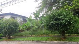 Terreno En Ventaen Panama, Hato Pintado, Panama, PA RAH: 20-11500