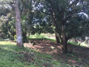 Terreno En Ventaen Panama, Las Cumbres, Panama, PA RAH: 20-11690