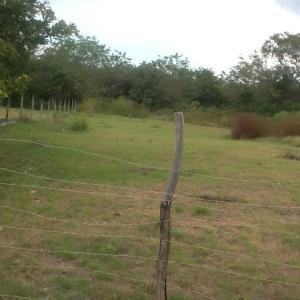 Terreno En Ventaen Chame, Gorgona, Panama, PA RAH: 20-11738