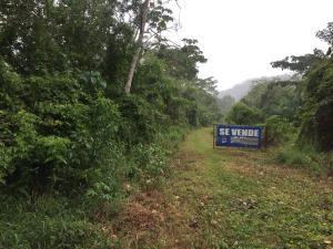 Terreno En Alquileren Panama, Juan Diaz, Panama, PA RAH: 20-11939