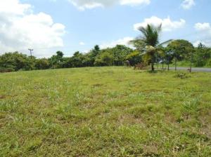Terreno En Ventaen San Carlos, San Carlos, Panama, PA RAH: 20-11940